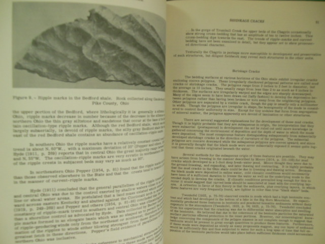 Image for Devonian - Mississippian Shale Sequence in Ohio (Information Circular No. 27)