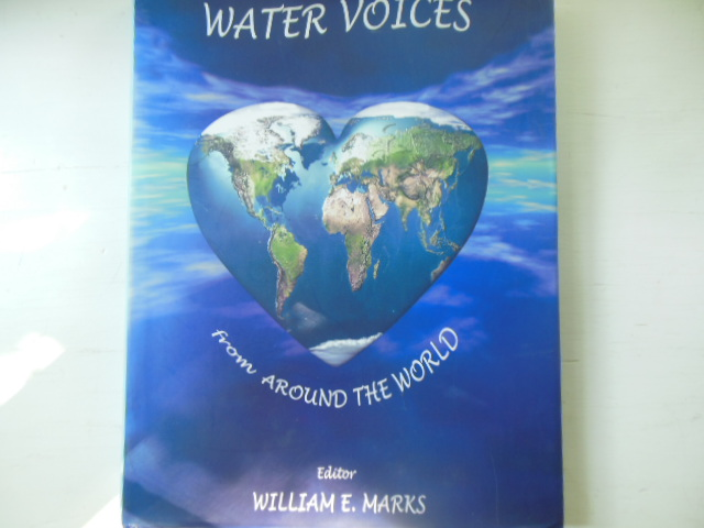 Image for Water Voices from Around the World