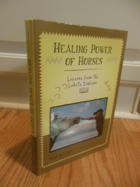 Image for Healing Power of Horses: Lessons from the Lakota Indians