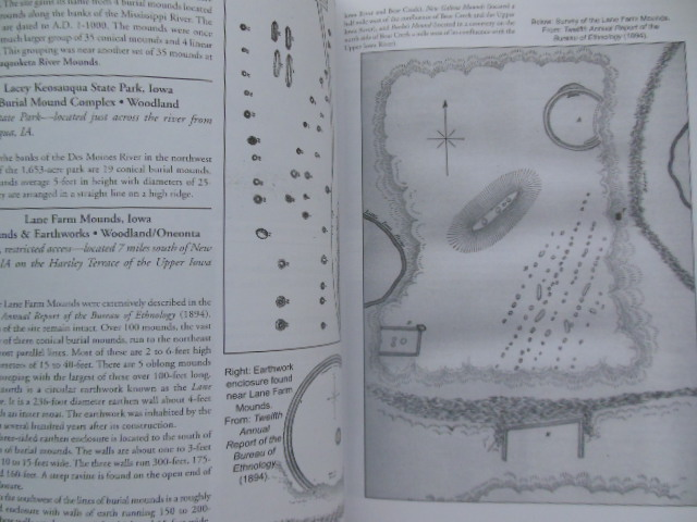 Image for The Illustrated Encyclopedia of Native American Mounds and Earthworks