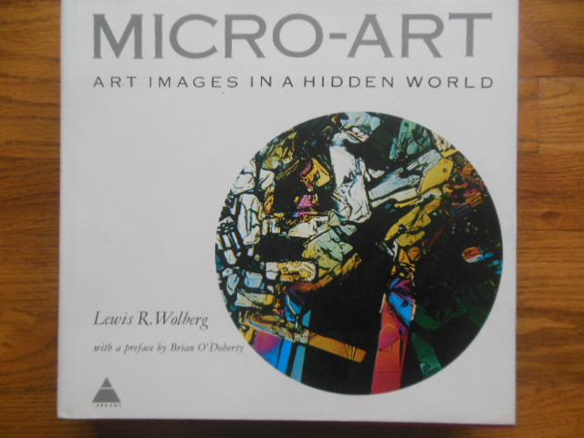 Image for Micro-Art: Art Images in A Hidden World