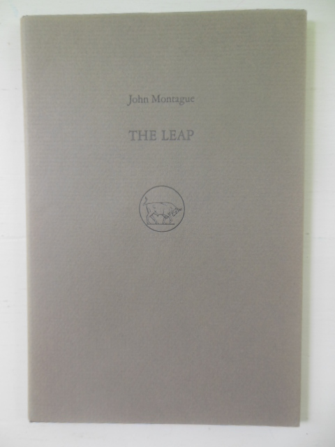 Image for The Leap (SIGNED Limited Ed.)