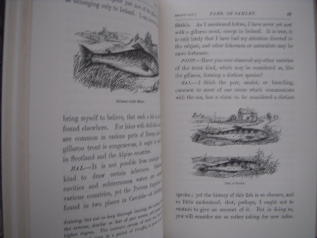 Image for Salmonia; Or Days of Fly Fishing with Some Account of the Habits of Fishes Belonging to the Genus Salmo