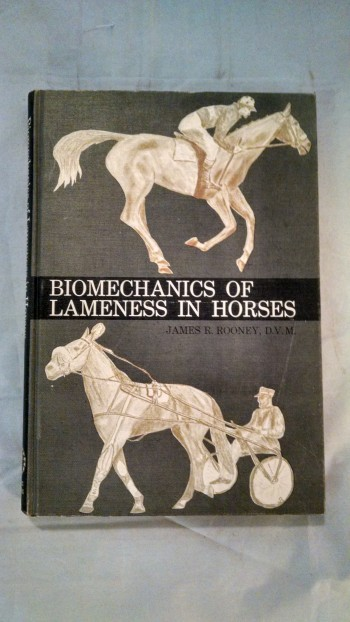 Image for BIOMECHANICS OF LAMENESS IN HORSES