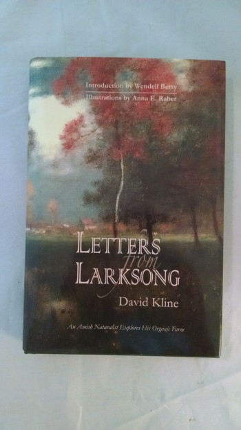 Image for LETTERS FROM LARKSONG
