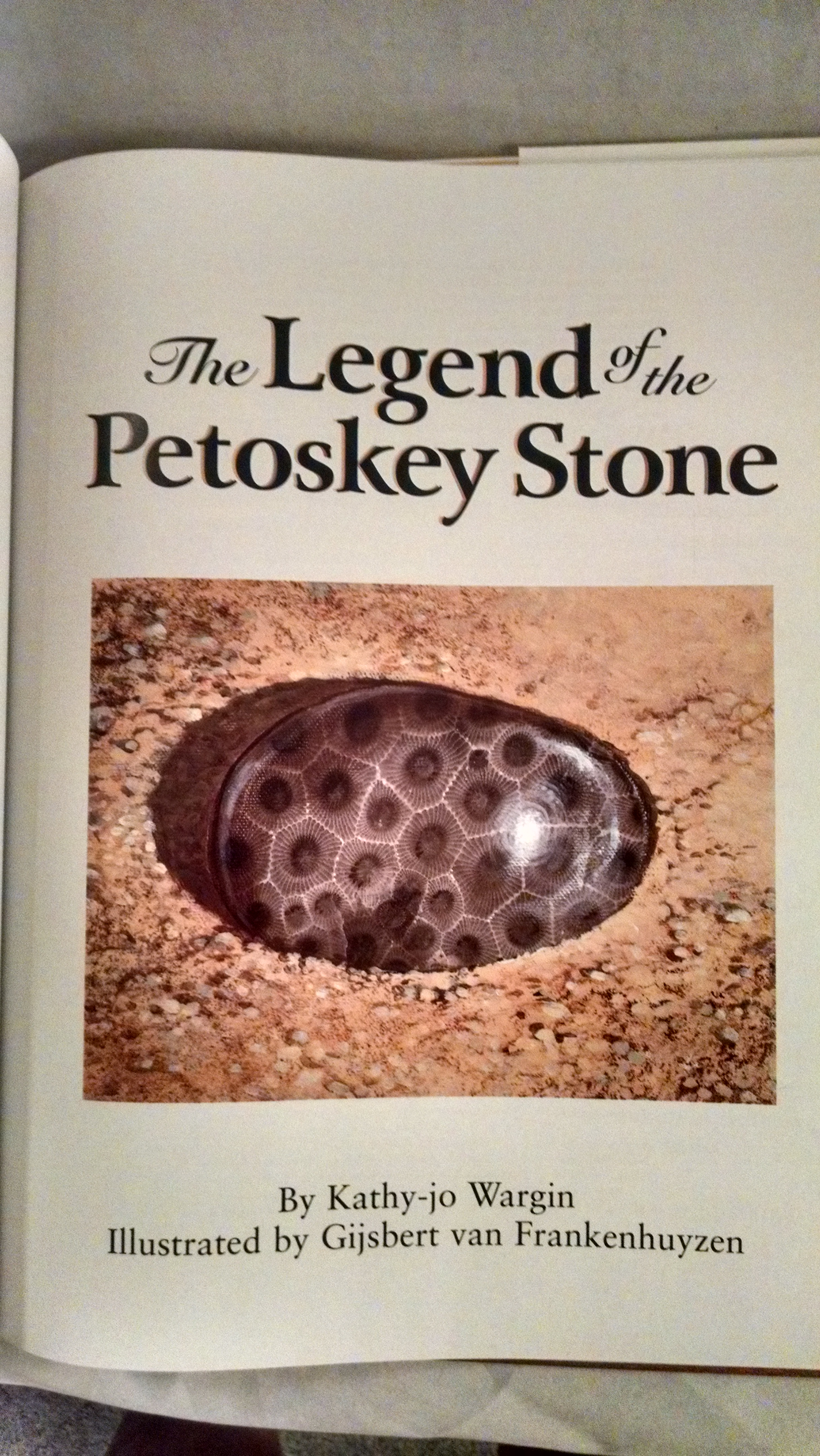 Image for THE LEGEND OF THE PETOSKEY STONE