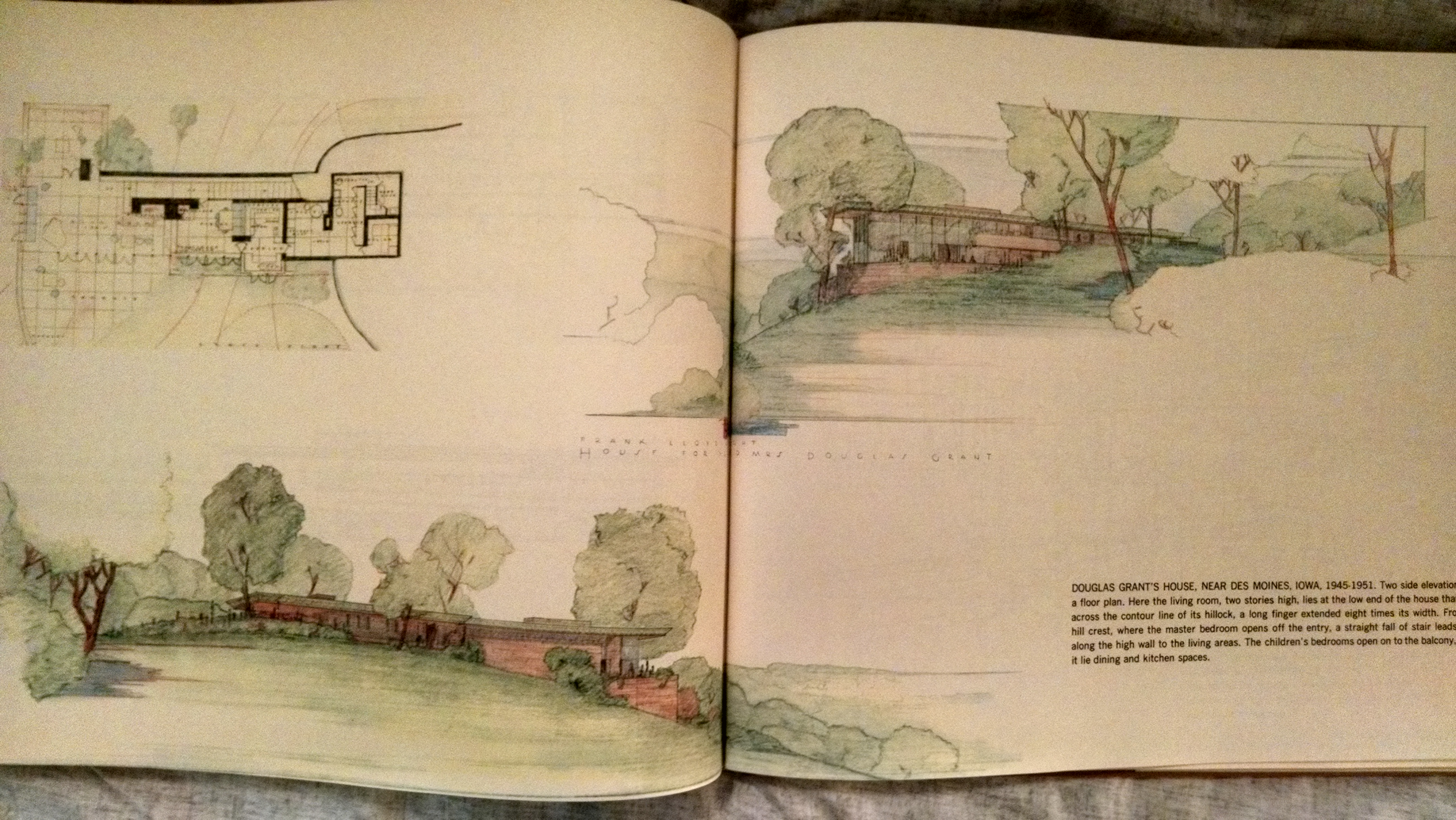 Image for FRANK LLOYD WRIGHT  DRAWINGS FOR A LIVING ARCHITECTURE