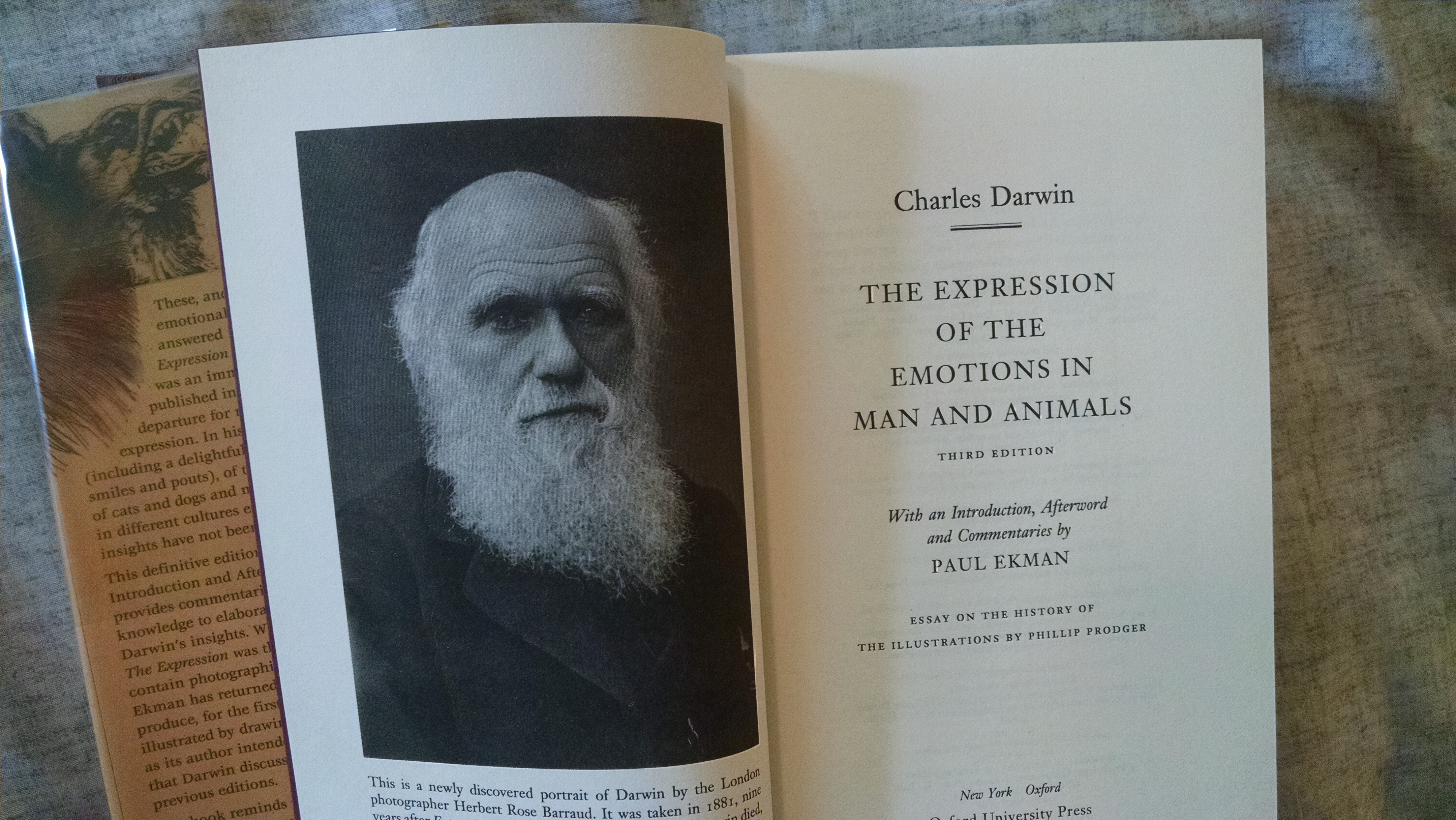 Image for THE EXPRESSION OF EMOTIONS IN MAN AND ANIMALS