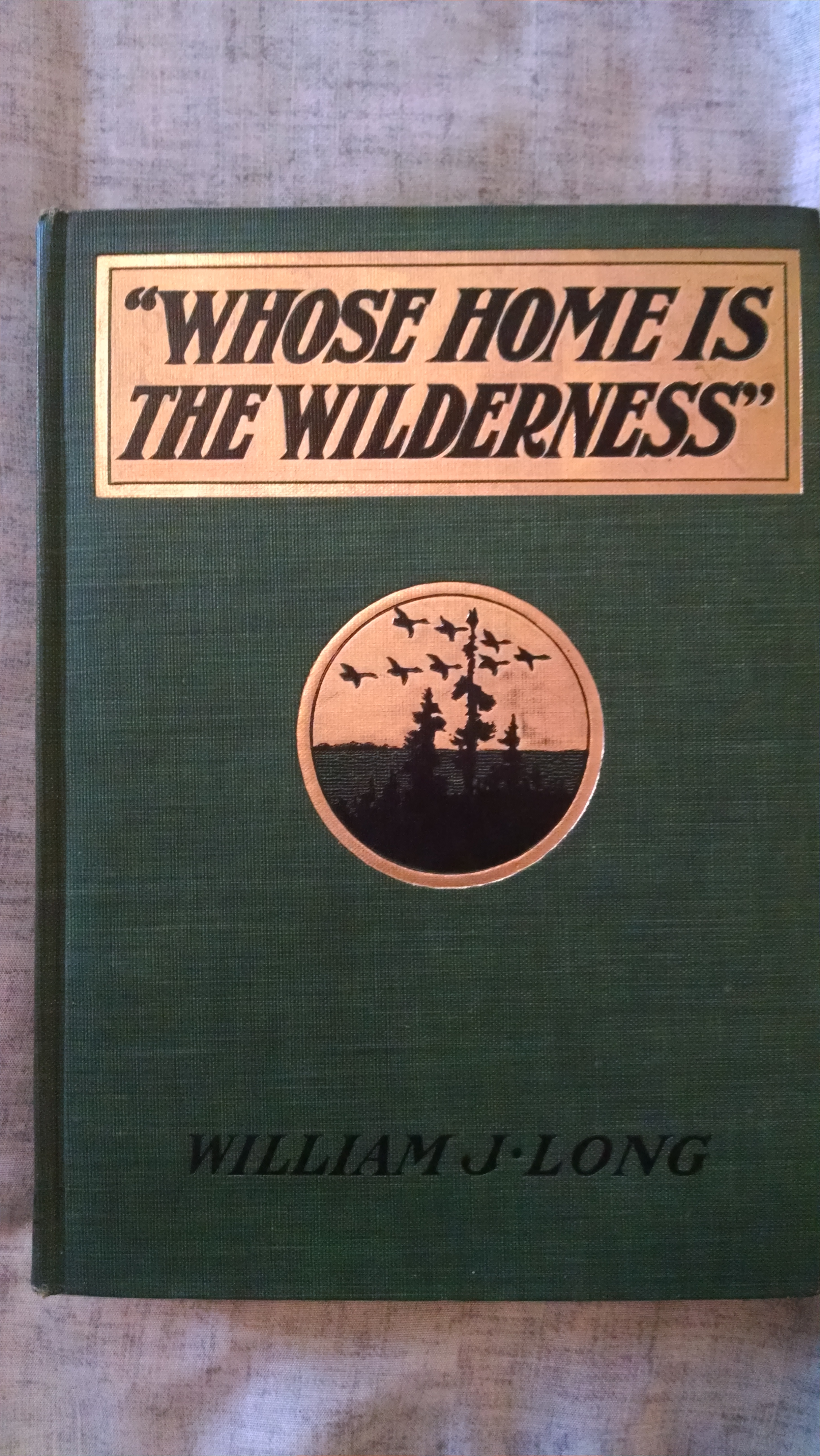 Image for WHOSE HOMES IS THE WILDERNES