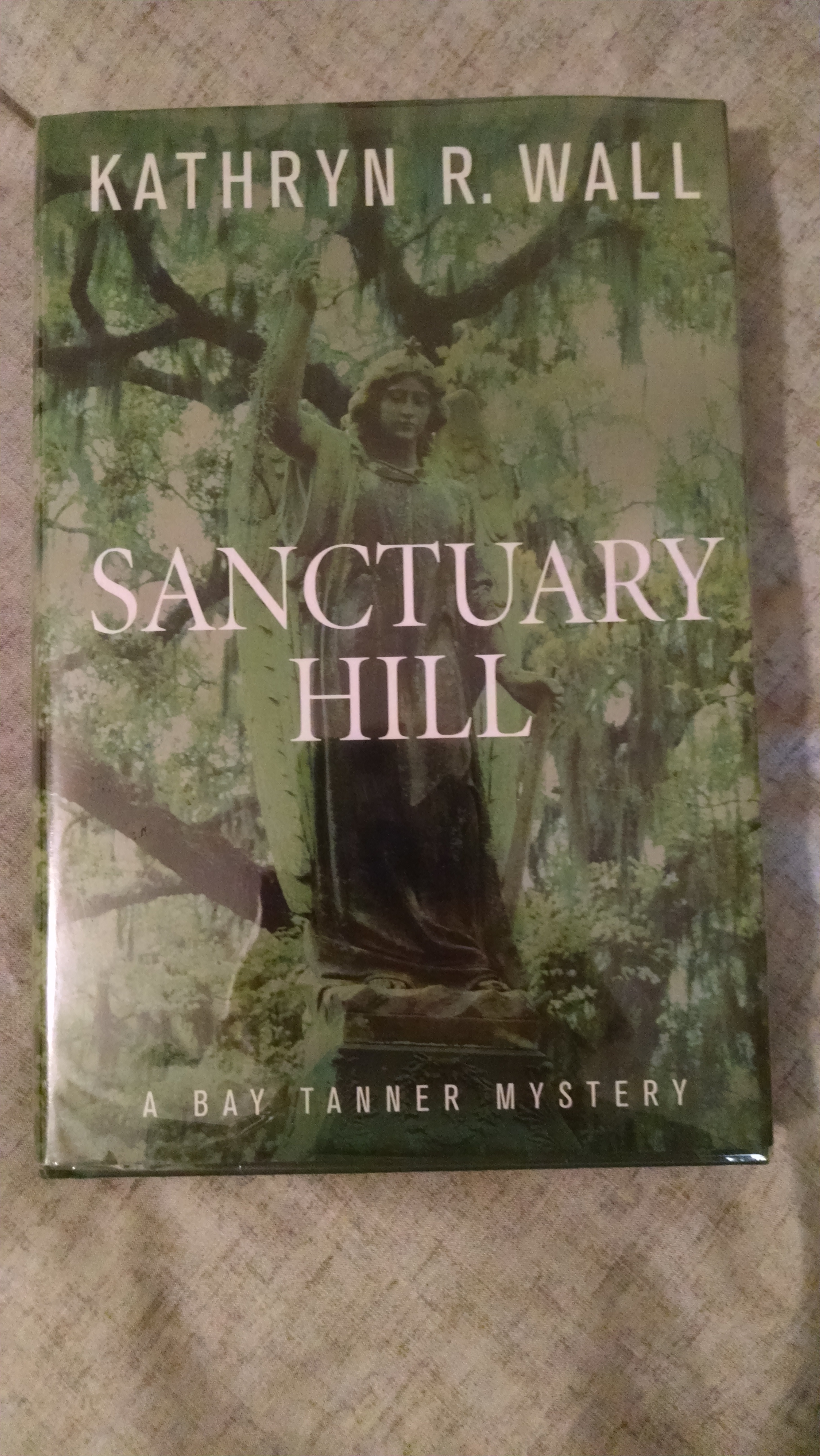 Image for SANCTUARY HILL