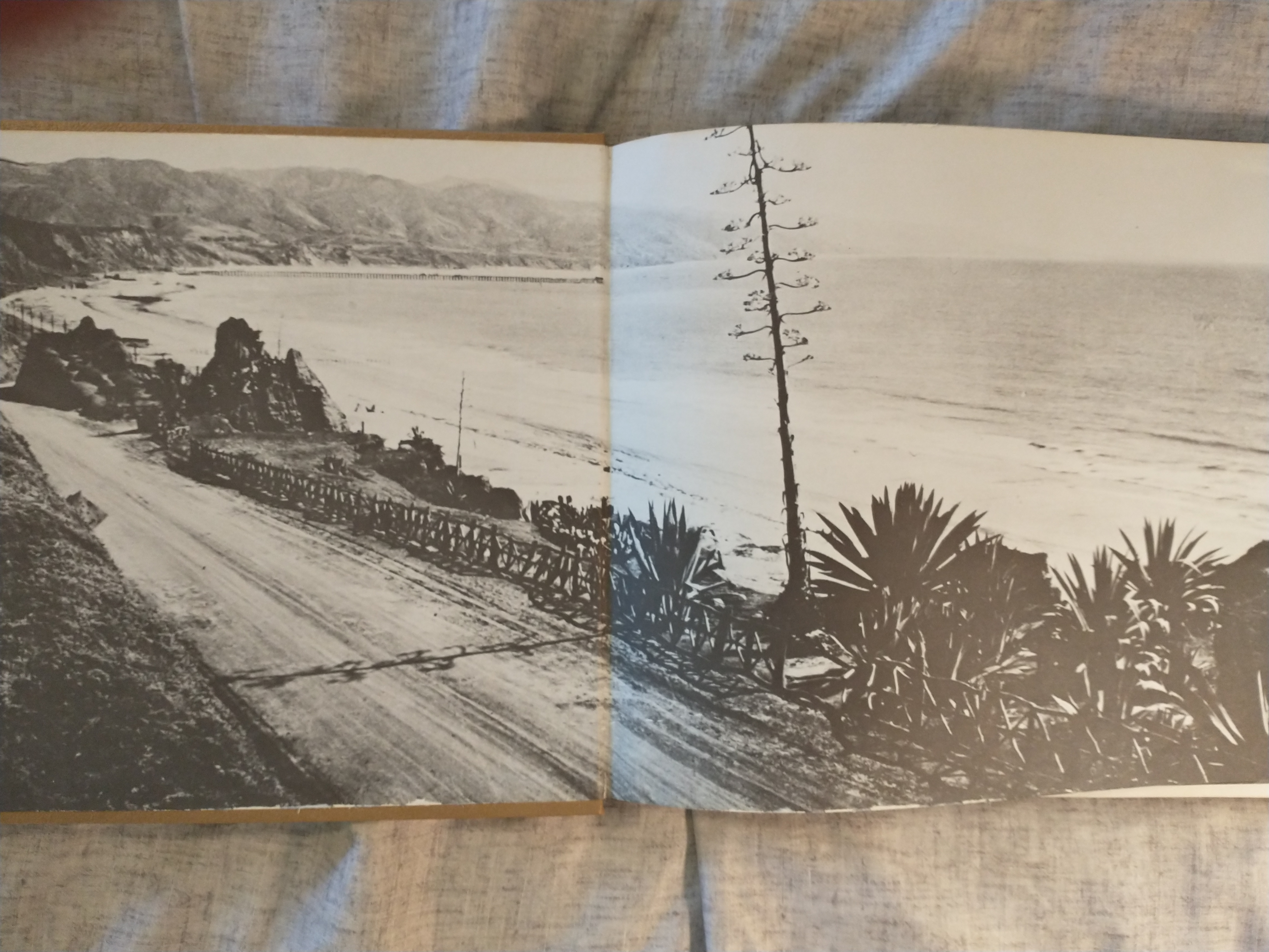 Image for SANTA MONICA BAY  THE FIRST 100 YEARS